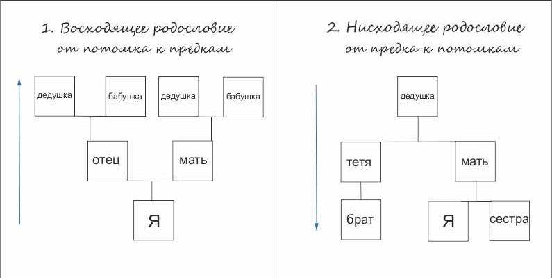 kak-sostavlyaetsya-rodoslovnoe-drevo